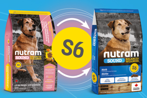 картинка NUTRAM Adult Dog S6 от магазина