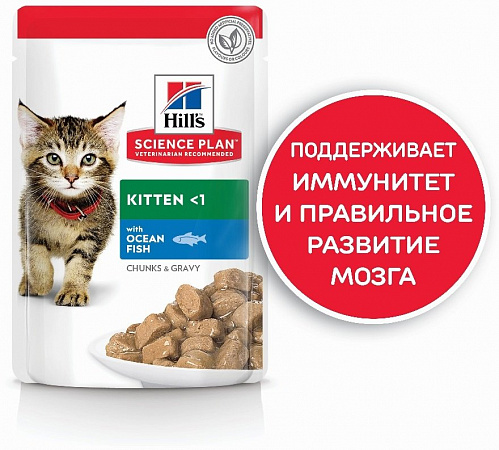 картинка HILL'S Kitten Ocean Fish Chunks in Gravy от магазина