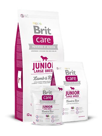 картинка BRIT Care Junior Large Breed Lamb & Rice от магазина